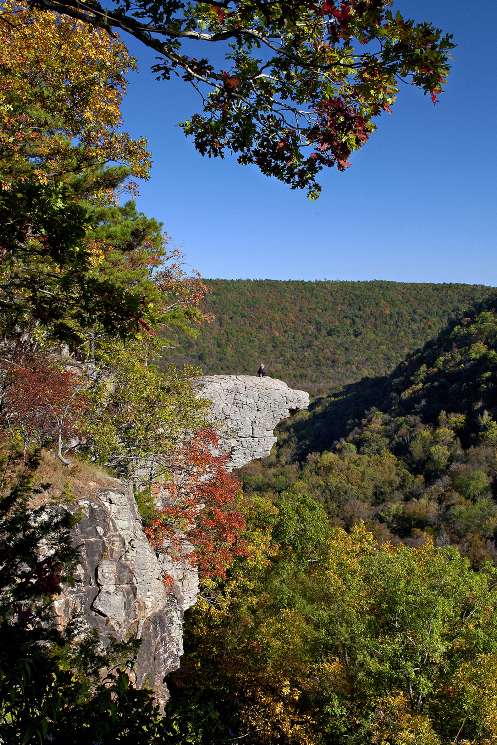 Whitaker Point October
